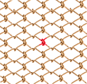 Networked_Rope