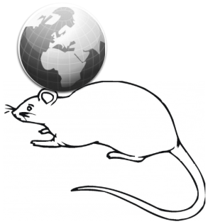 World Of Mouse